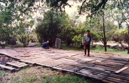 dai-hoi-long-van-1989 (5)