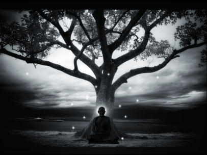 meditation-thien (9)