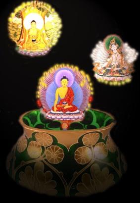 v-buddhas