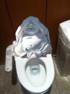 buddha-image-toilet (7)