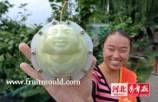 buddha-pear (7)