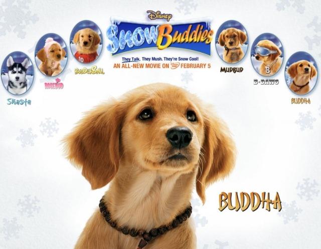 disney-buddha-dog2