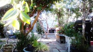 thaita-backyardjuly2014 (12)