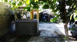 thaita-backyardjuly2014 (16)