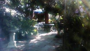 thaita-backyardjuly2014 (21)