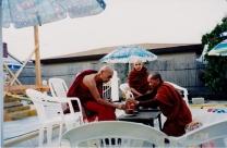 tuyethong-stupabackyard (106)