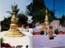 tuyethong-stupabackyard (13)