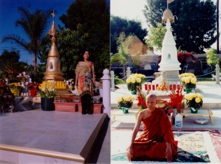 tuyethong-stupabackyard (18)