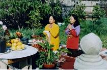 tuyethong-stupabackyard (63)
