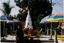 tuyethong-stupabackyard (72)