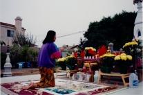 tuyethong-stupabackyard (73)