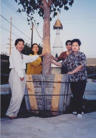 tuyethong-stupabackyard2 (10)