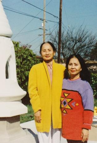 tuyethong-stupabackyard2 (11)