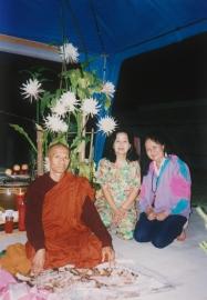 tuyethong-stupabackyard2 (2)