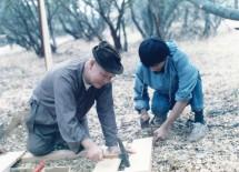 tvhaikhong1985 (3)